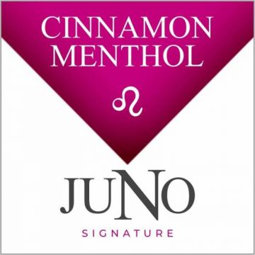 Signature Collection 4pk Juno Pods - LEO - Cinnamon Menthol