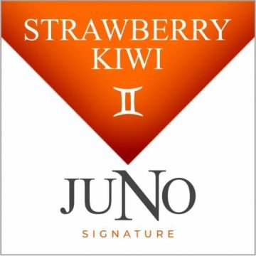 Signature Collection 4pk Juno Pods - GEMINI - Strawberry Kiwi