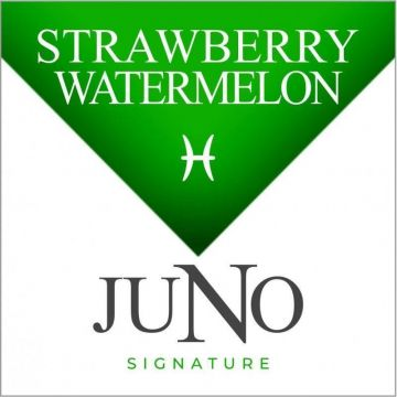 Signature Collection 4pk Juno Pods - PISCES - Strawberry Watermelon